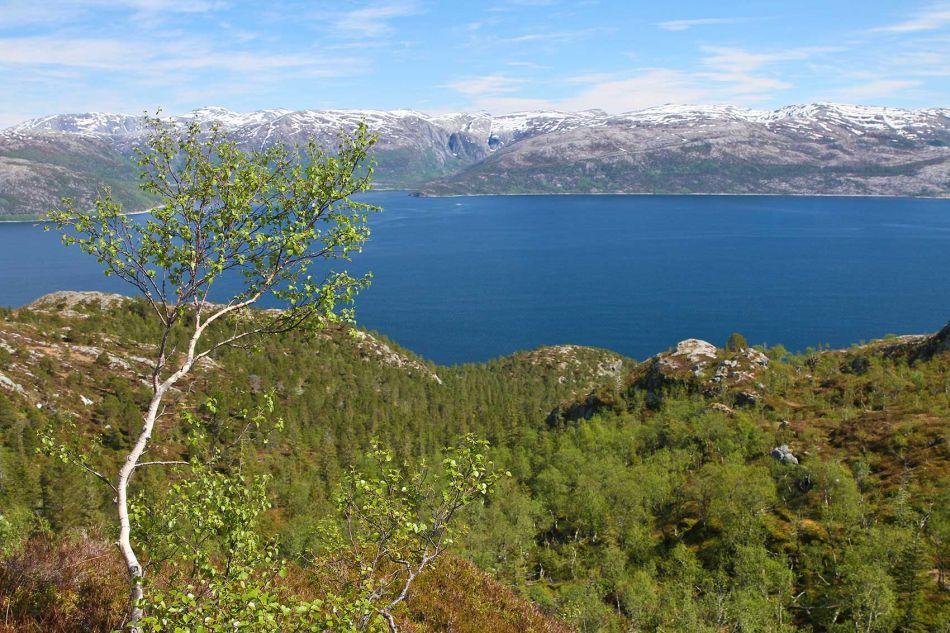 b_950_950_0_00_images_Dagensbilde_2013_Vandalsvikfjellet_IMG_6249.jpg